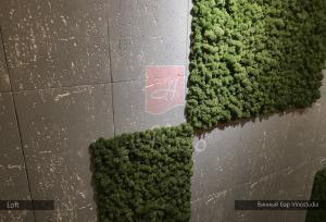 Гипсовые 3d панели Alivio серии Loft  в интерьере винного бара Vinostudia, 3д панель, 3d wallpanel, производитель цена купить Украина  alivio.com.ua